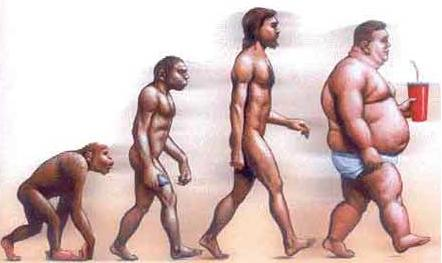 obesity-evolution