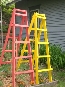 MI Patriot ladders