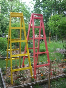 MI Patriot ladders 2