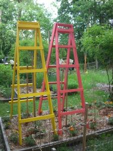 MI Patriot ladders 2