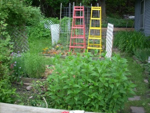 Todd's Tomato Ladders in primary colors