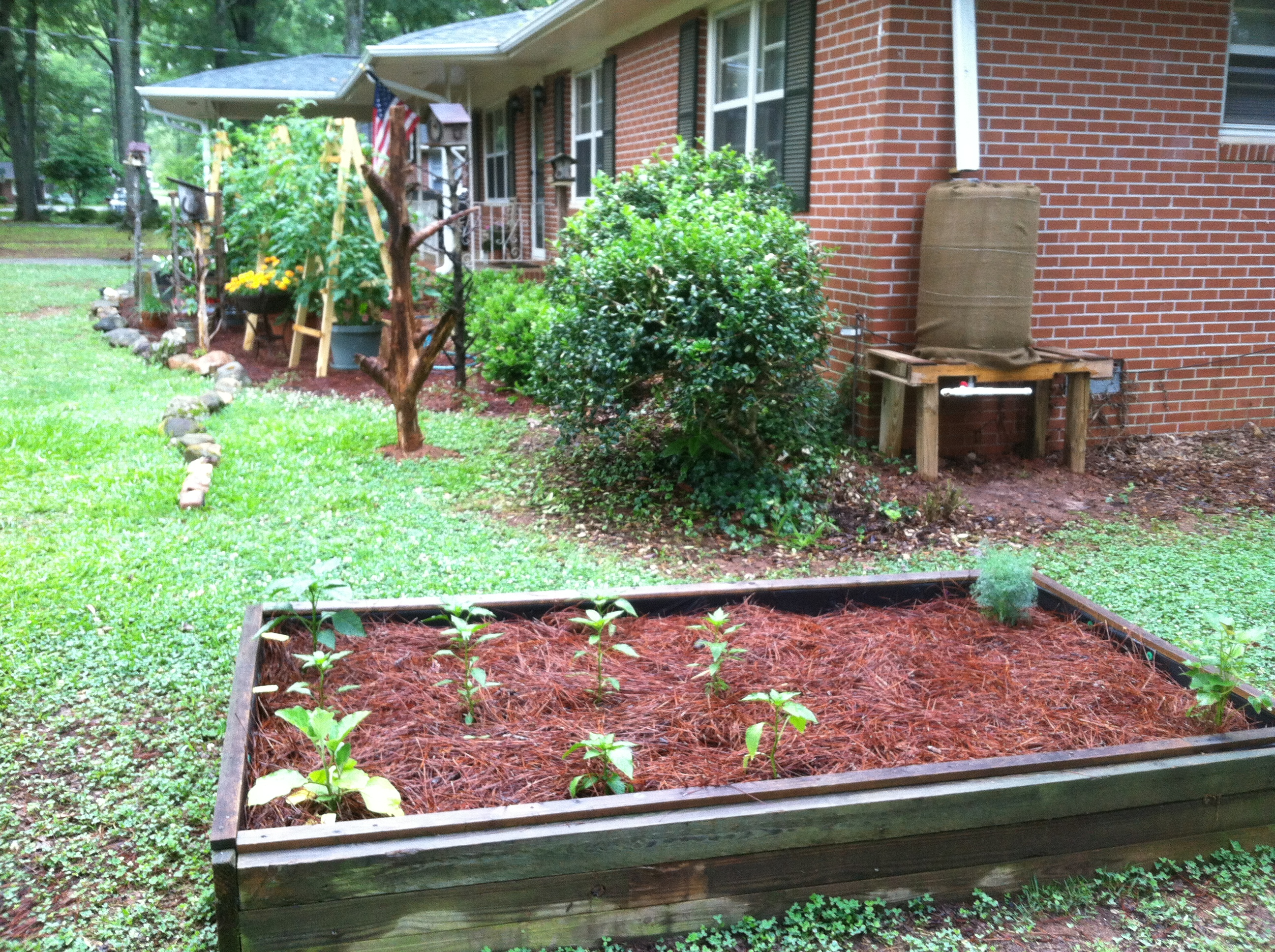 raised bed grassed area plants this aged house