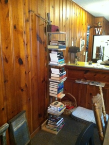 All these books once occupied the shelf pictured next to the vertical spine book shelf. DRG is happy.