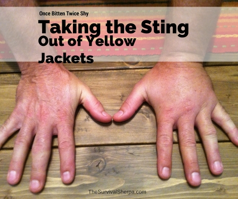 Once Bitten Twice Shy: Taking the Sting Out of Yellow Jackets - TheSurvivalSherpa.com