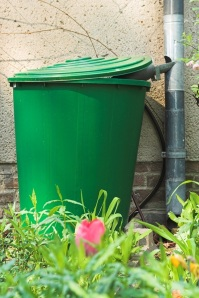 From Waste to Water Reservoir: Building a Rain Barrel from a Trash Can