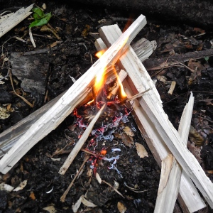 Post #500: The One Stick Fire Challenge