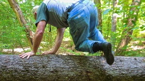 Functional Fitness: The Wild Woodsmans Workout
