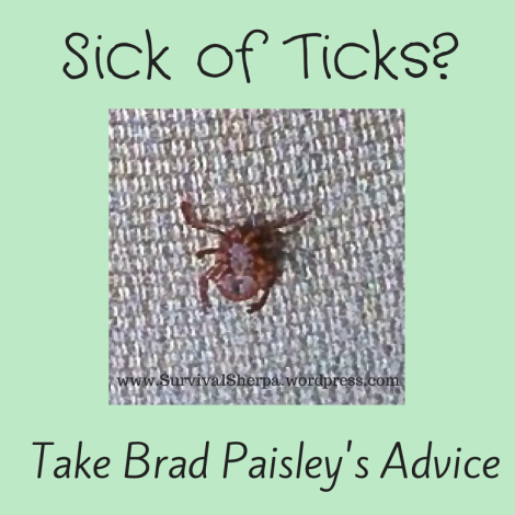 Sick of Ticks? Take Brad Paisley's Advice