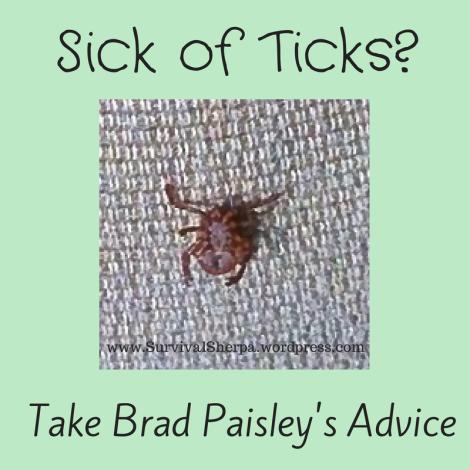 Sick of Ticks? Take Brad Paisley's Advice