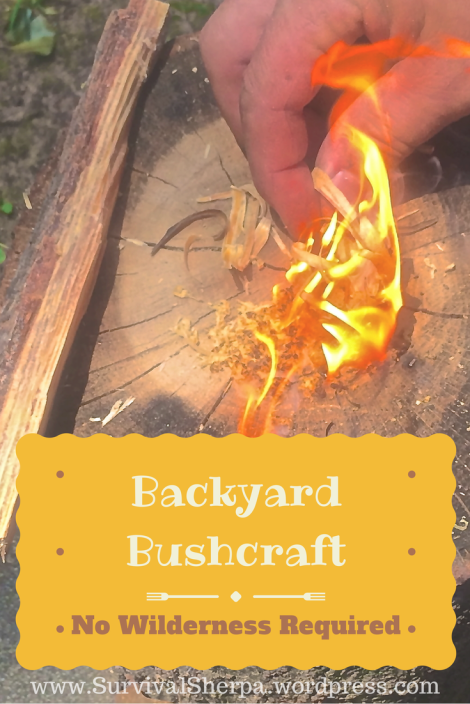 backyard-bushcraft