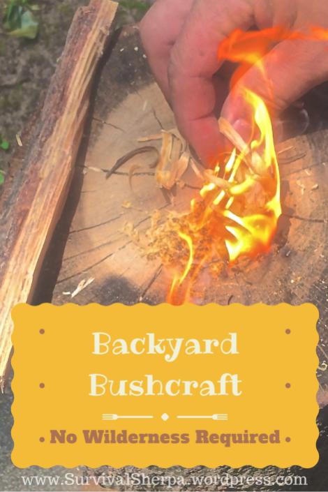 backyard-bushcraft