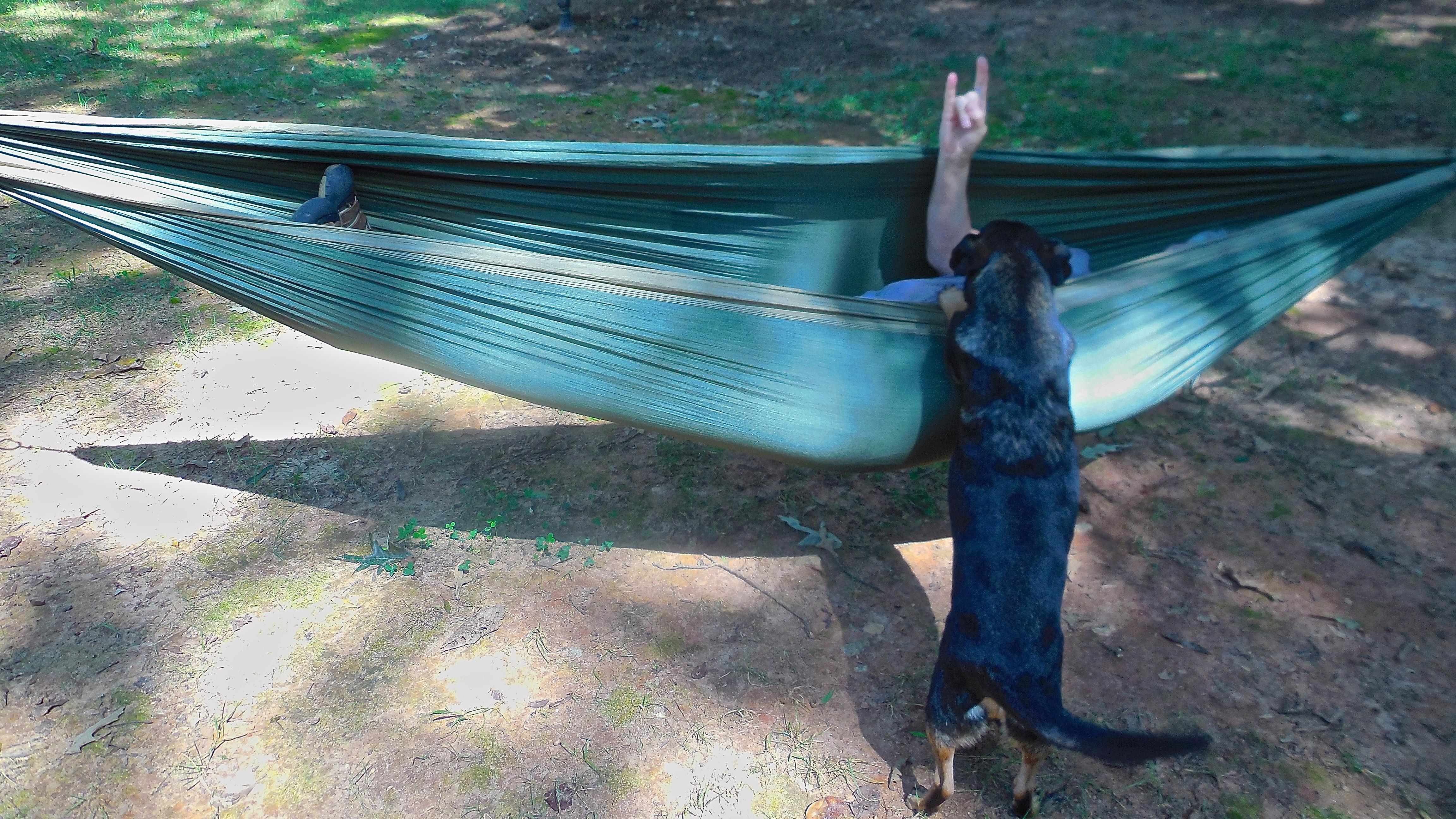 Backyard Bushcraft Skills No Wilderness Required