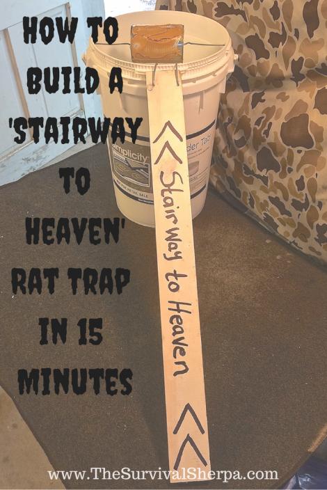stairway-to-heaven-bucket-rat-trap