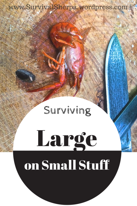 Surviving Large on Small Stuff