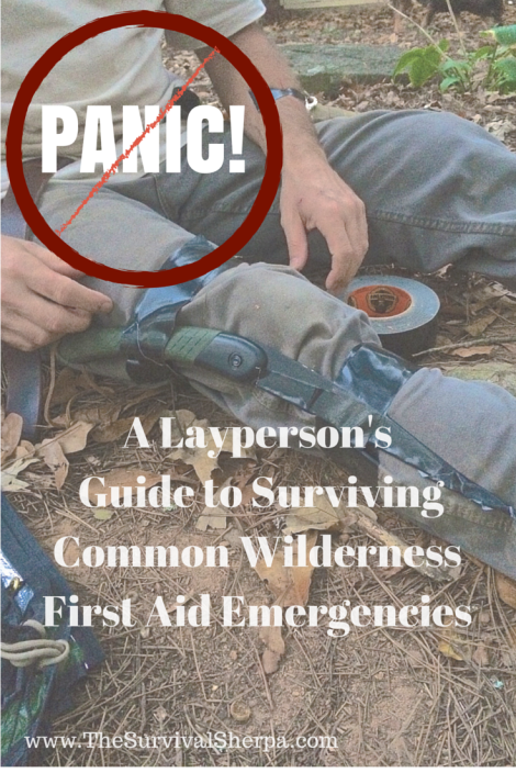 guide-to-surviving-common-wilderness-emergencies