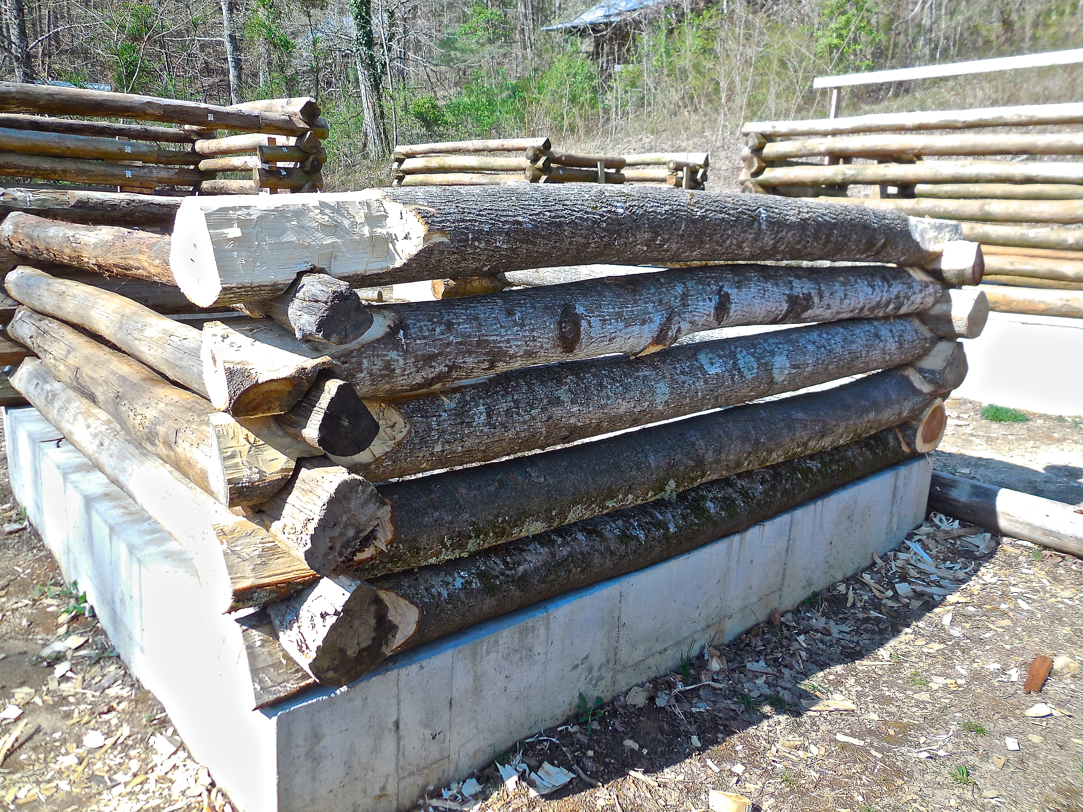 how to build a log home from trees