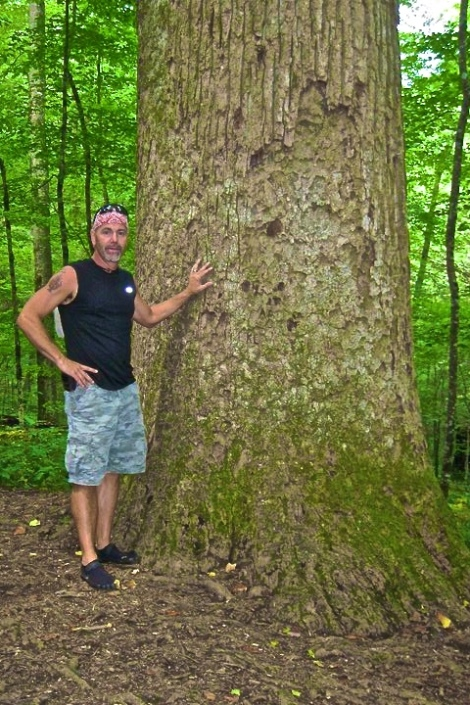 Trees for Self-Reliance | www.TheSurvivalSherpa.com