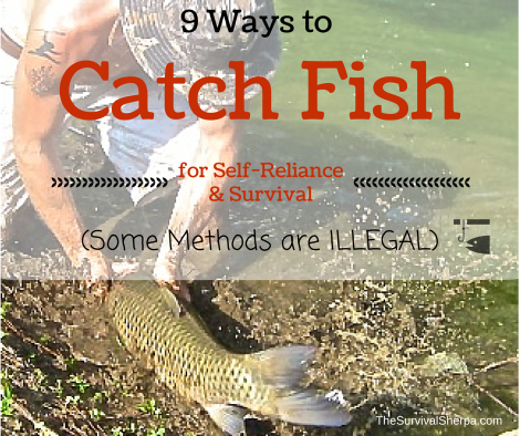 9 Ways (Some Illegal) to Catch Fish for Self-Reliance and Survival - TheSurvivalSherpa.com