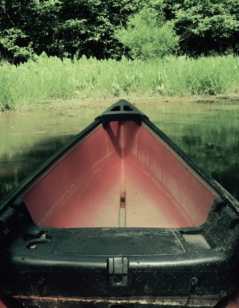 Canoes and kayaks are portable.
