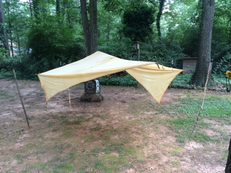 Flying the bed sheet tarp in the backyard