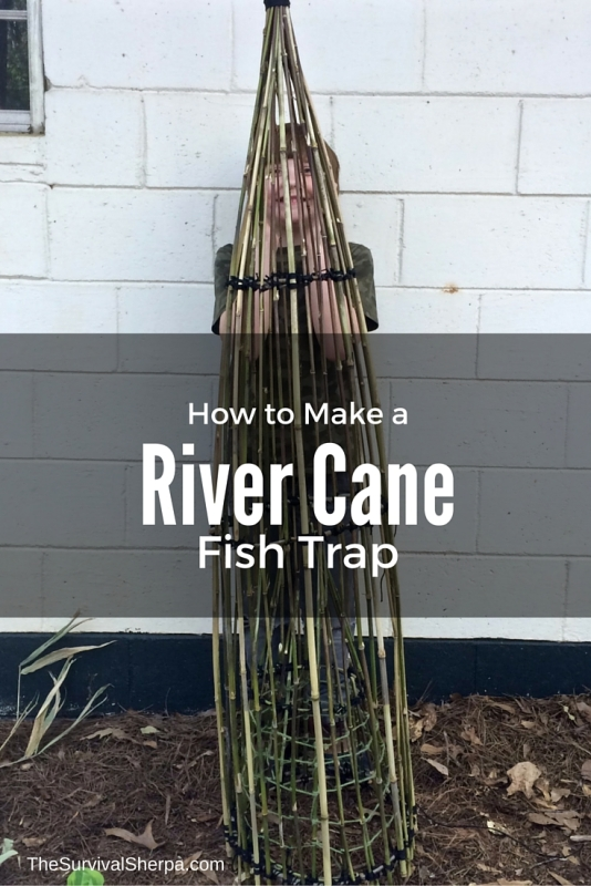 How to Make a River Cane Fish Trap - TheSurvivalSherpa.com