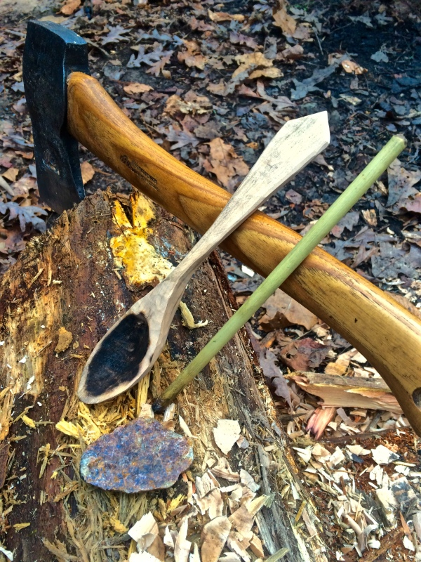 River Cane- 25 Self-Reliant Uses for -Cherokee Plastic- - TheSurvivalSherpa.com