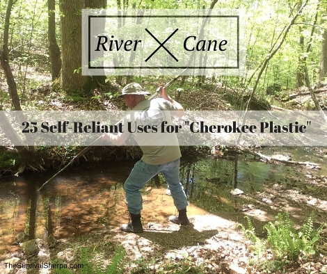"River Cane: 25 Self-Reliant Uses for ""Cherokee Plastic"""