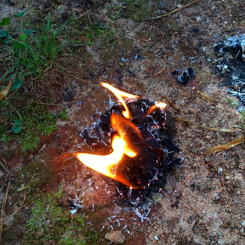 Primitive Fire Balls: How to Make a Waterproof Natural Tinder Bundle ~ TheSurvivalSherpa.com
