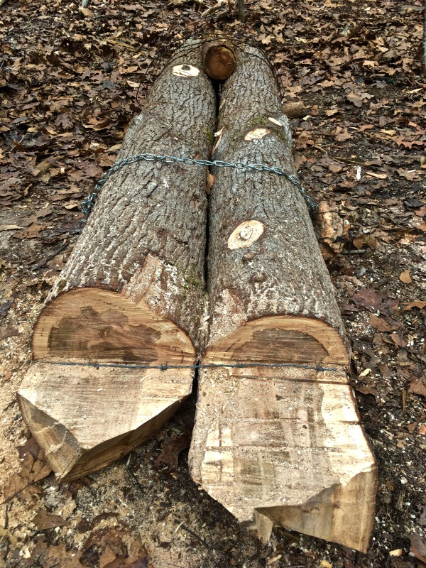 Ax Chopping Platform: Speed Up Firewood Cutting Safely ~ TheSurvivalSherpa.com