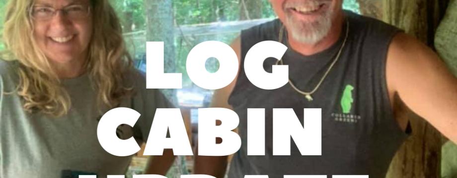 Log Cabin Update 2020